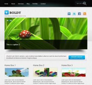 boldy-free-wordpress-theme